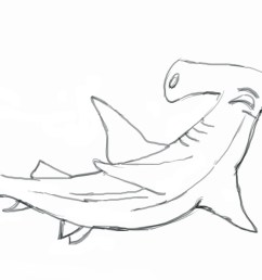 hammerhead shark clipart black and white gallery [ 1150 x 728 Pixel ]