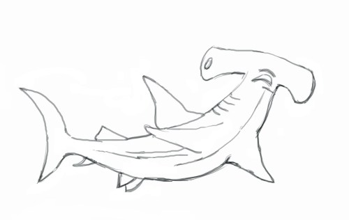 small resolution of hammerhead shark clipart black and white gallery