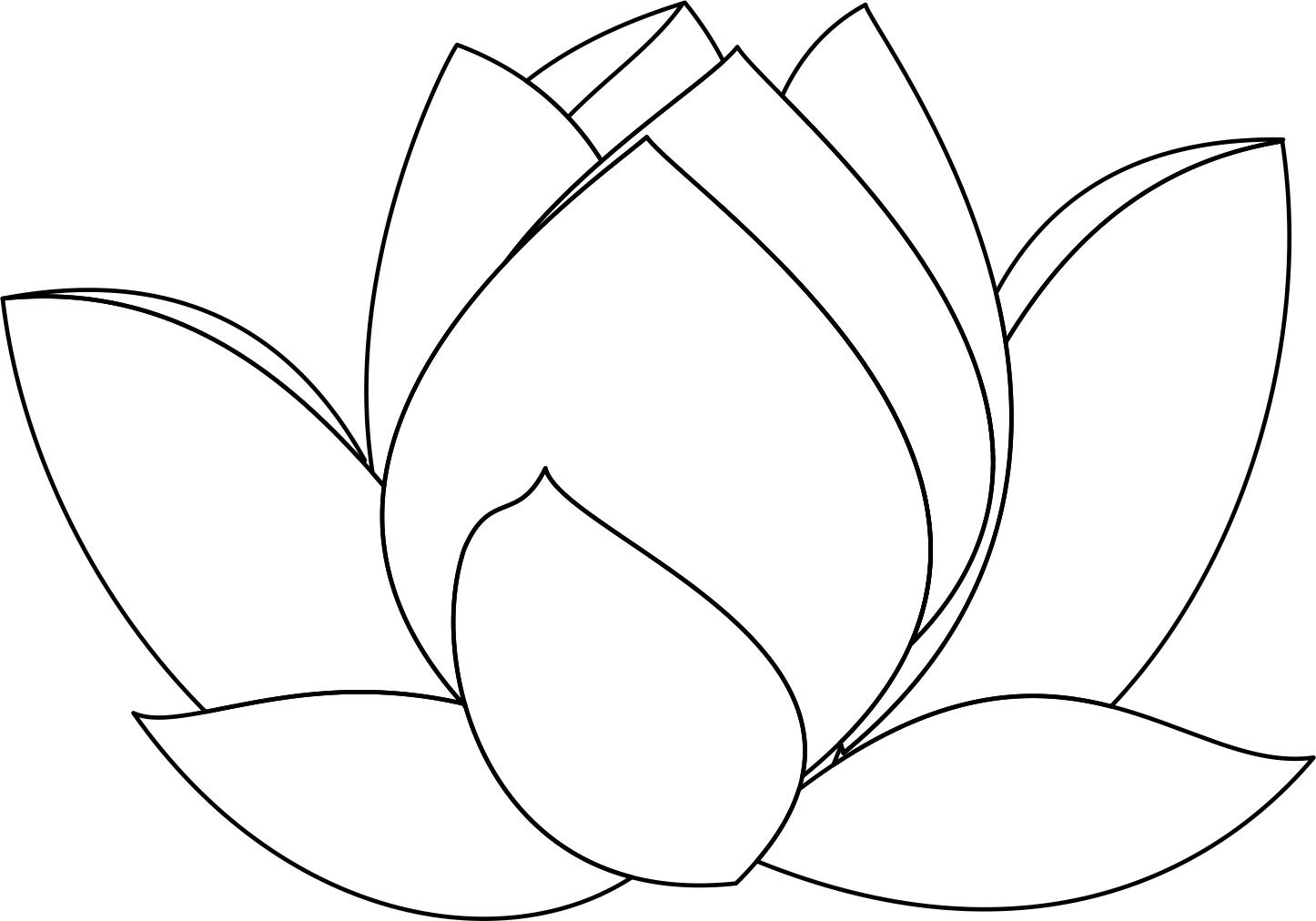Lotus Flower Line Drawing