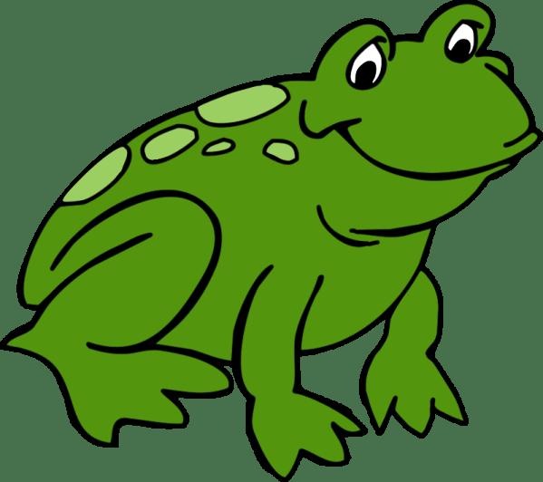 frog border