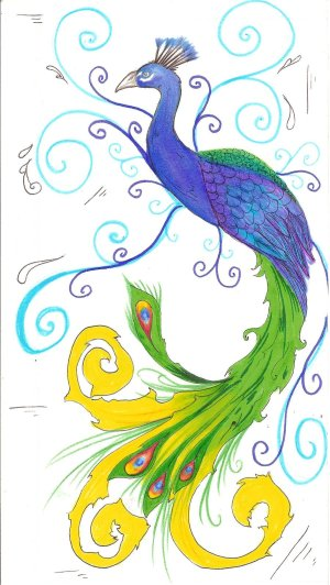 peacock drawing drawings simple peacocks colorful clipart cliparts panda paintings draw deviantart clip von bird library theme birds attribution forget