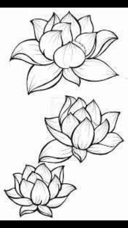 Lotus Flower Outline  Tattoos  Pinterest  Clipartsco