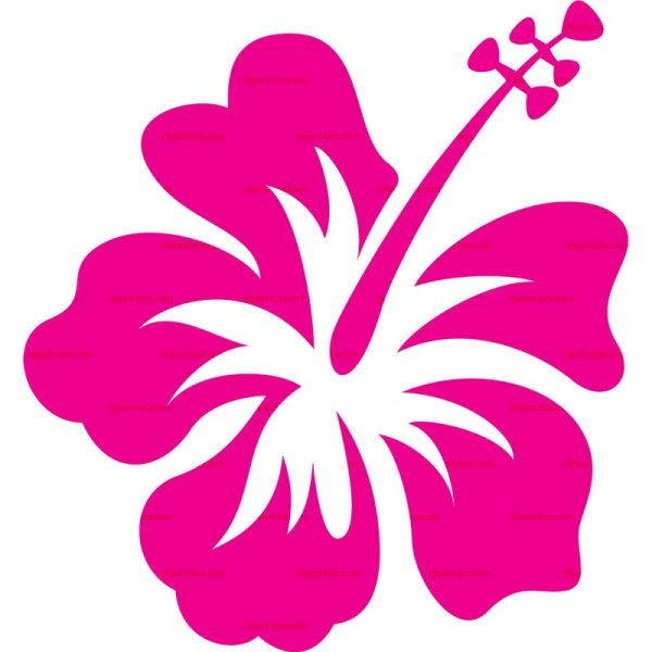 hawaiian flowers clip art