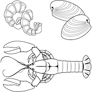 Seafood Collage 2 clipart, cliparts of Seafood Collage 2