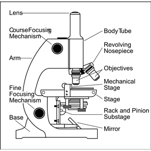 microscope with labels clipart, cliparts of microscope