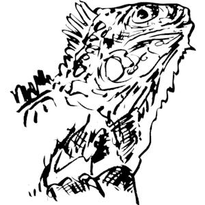 Iguana clipart, cliparts of Iguana free download (wmf, eps