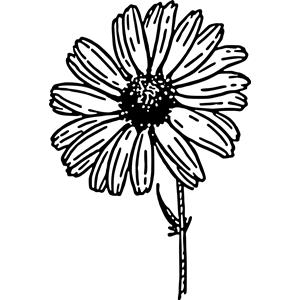 Daisy clipart, cliparts of Daisy free download (wmf, eps