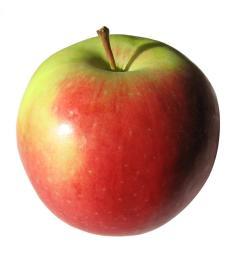 images apple clipart page 5 2 [ 1024 x 1024 Pixel ]