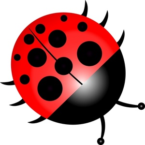 cute cartoon ladybug clipart