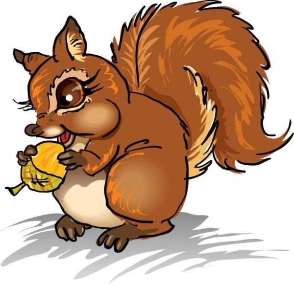 free squirrel clipart clip art