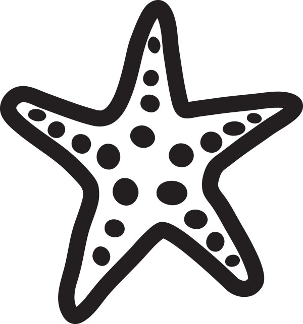Starfish Orange Red Clip Clipart Free Art