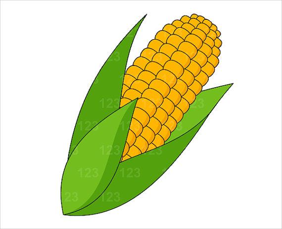 corn clipart #12563