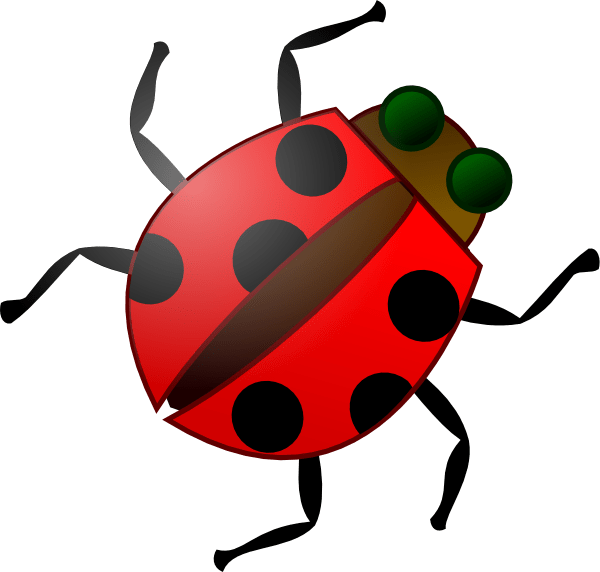 lady bug clipart google