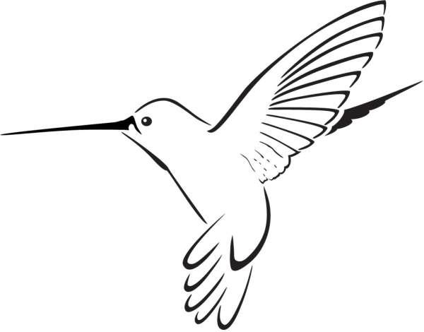 hummingbird clipart green free