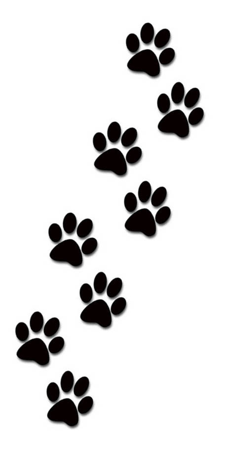 Cat paw clipart hd dog paw border clipart cats wallpaper