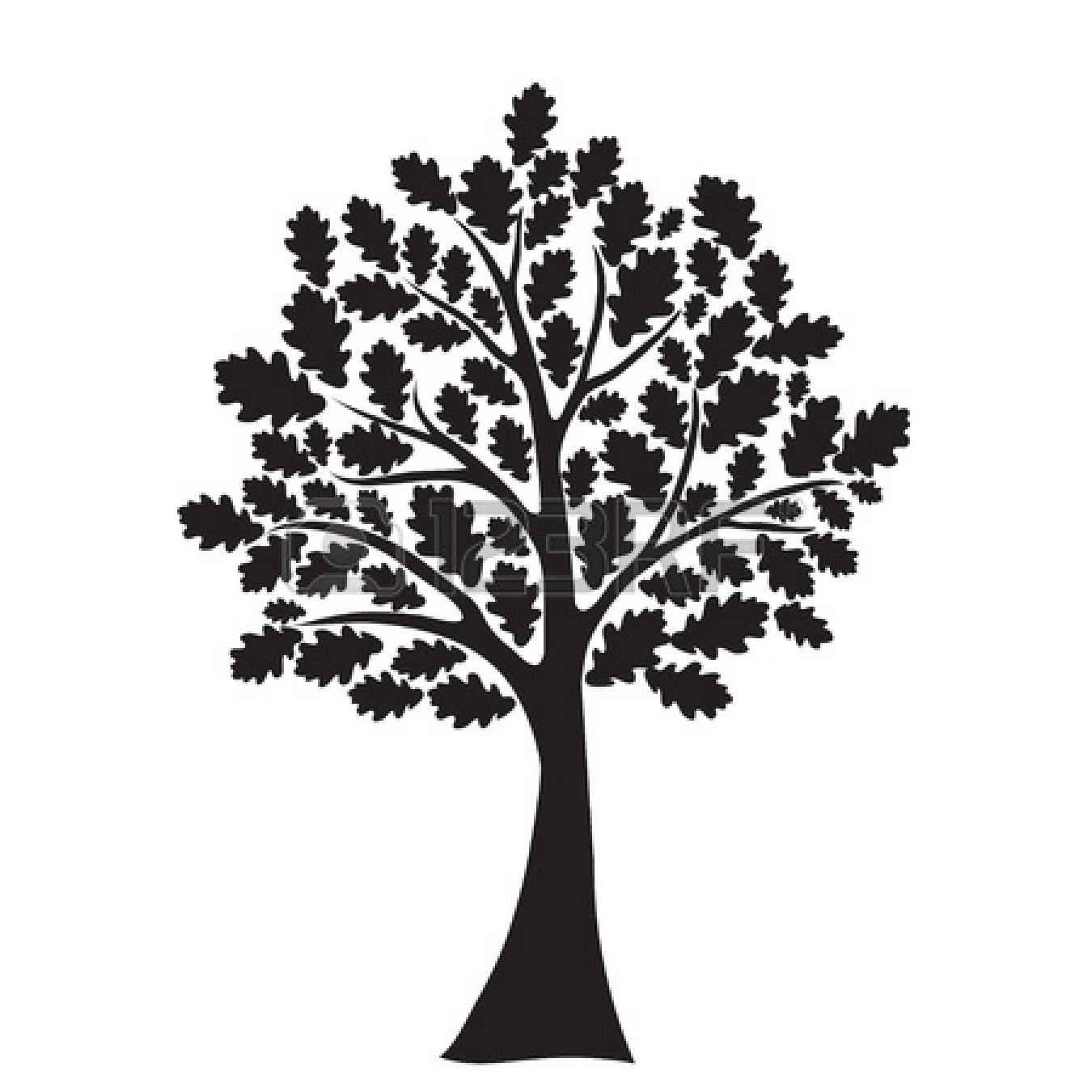Pic Black And White Drawings Of Oak Trees Clipart Image