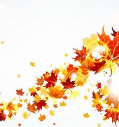 fall border autumn fall leaves border clipart free clipart images 2 clipartcow [ 1920 x 1080 Pixel ]