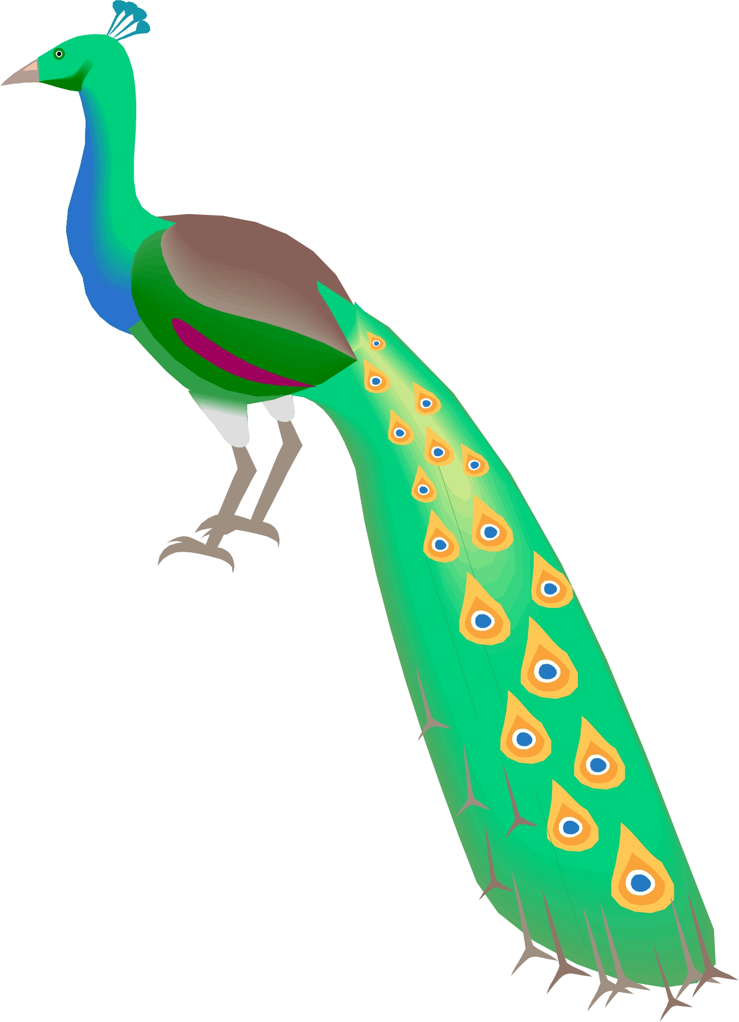 hight resolution of peacock clipart free clipart images 3 clipartix