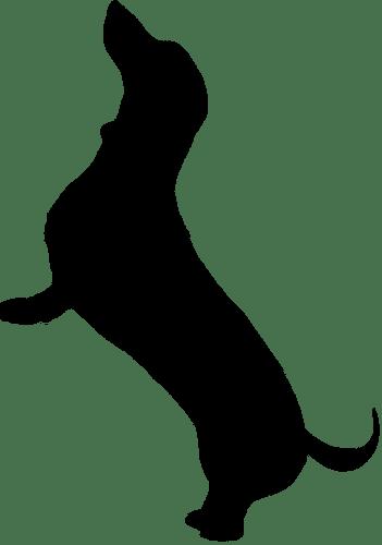 dachshund silhouette and clip art
