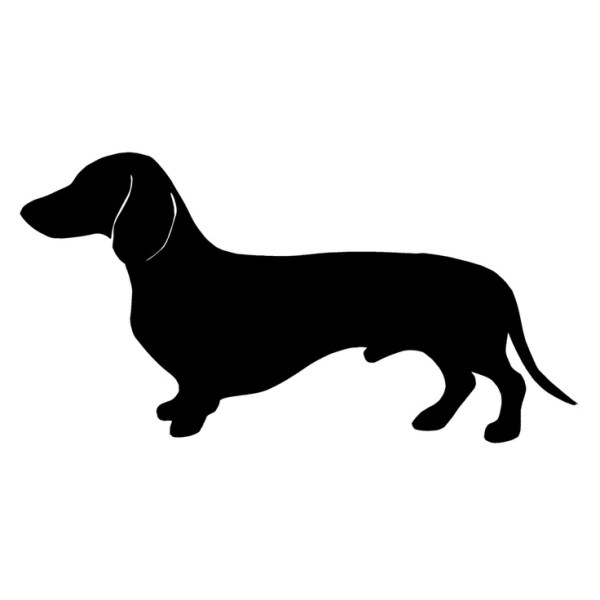 dachshund silhouette and vector