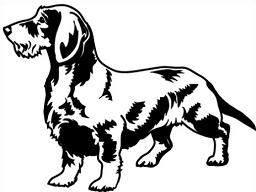 Free dachshund clipart image #41404