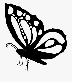butterfly side clipart drawing shape