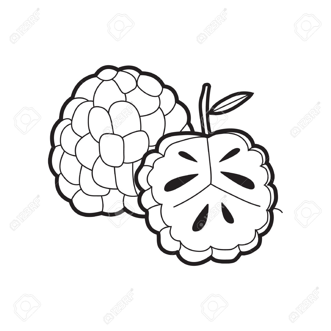 Atis Clipart Black And White 10 Clipart Station