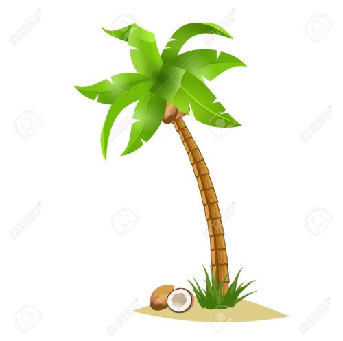 small resolution of coconut tree clipart 2
