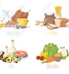 healthy nutrition proteins fats carbohydrates balanced diet cooking culinary and food concept vector  [ 1300 x 1083 Pixel ]