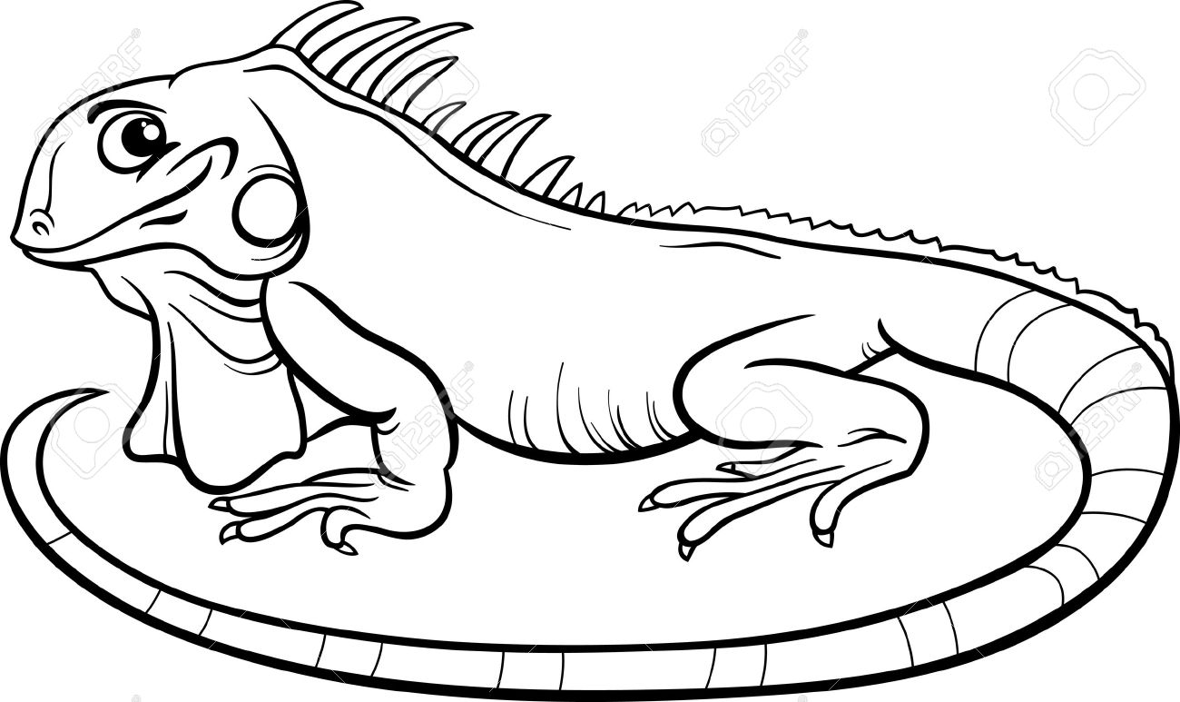 Iguana Clipart Black And White Clipart Station