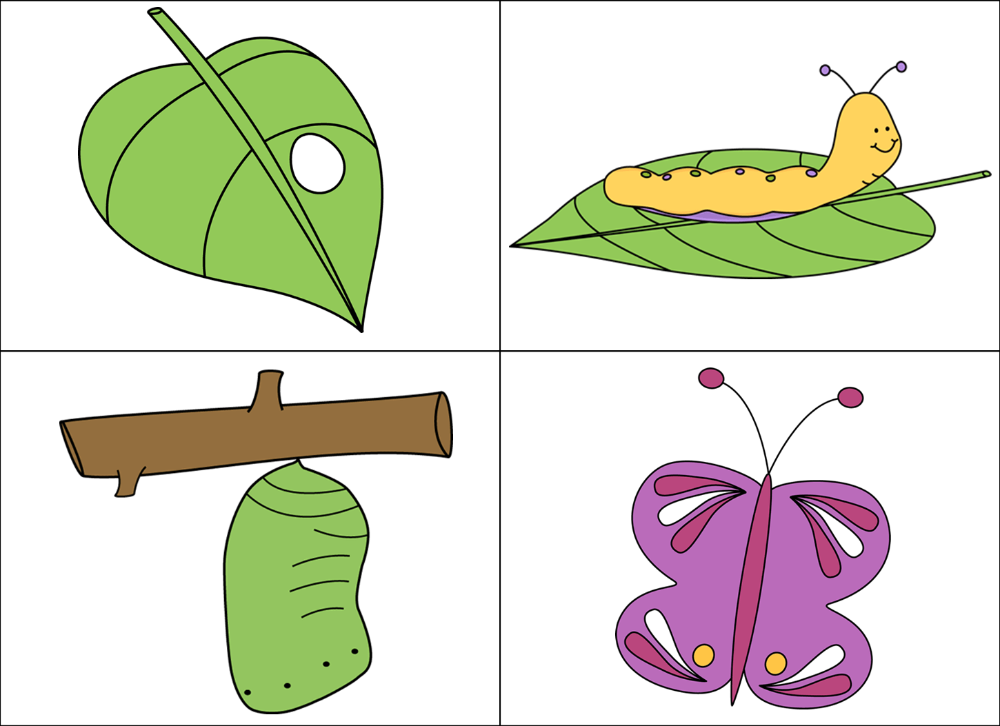 Life Cycle Of A Butterfly Clipart Clipart Station