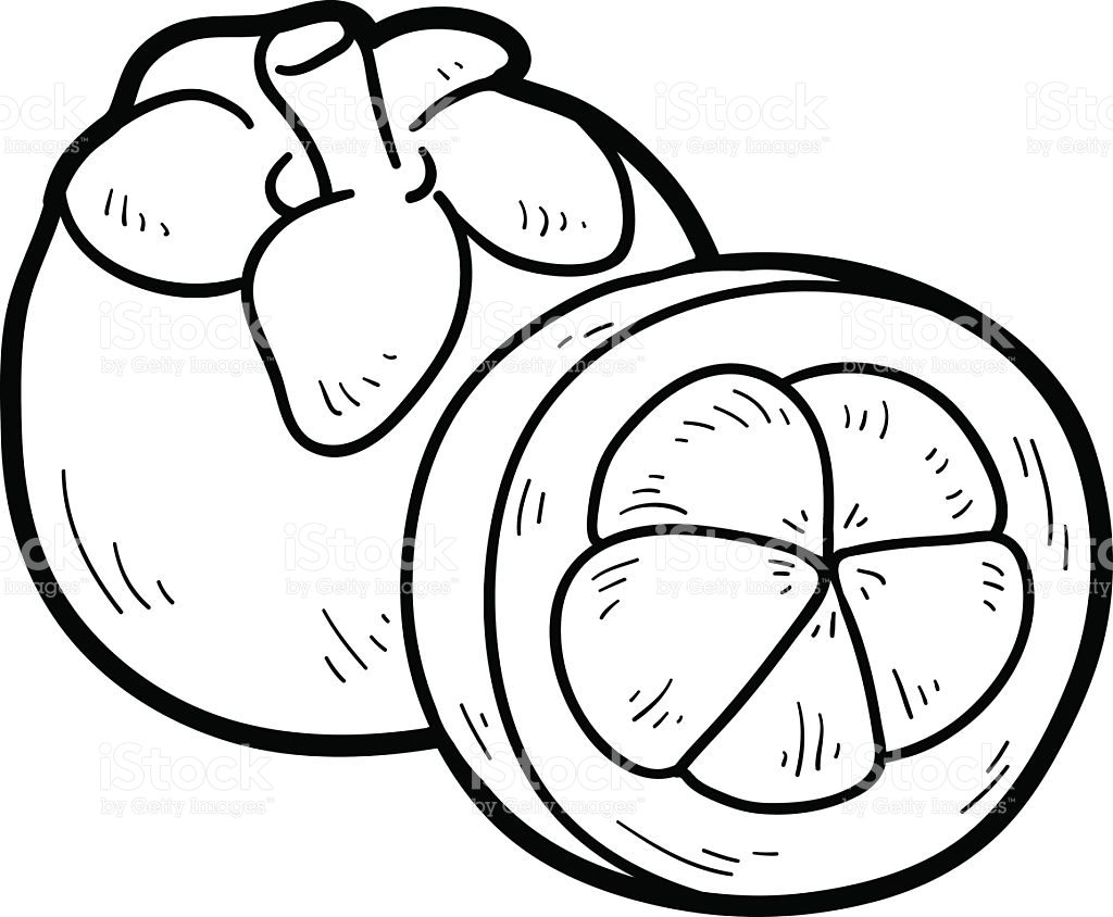 Mangosteen Clipart Black And White Clipart Station