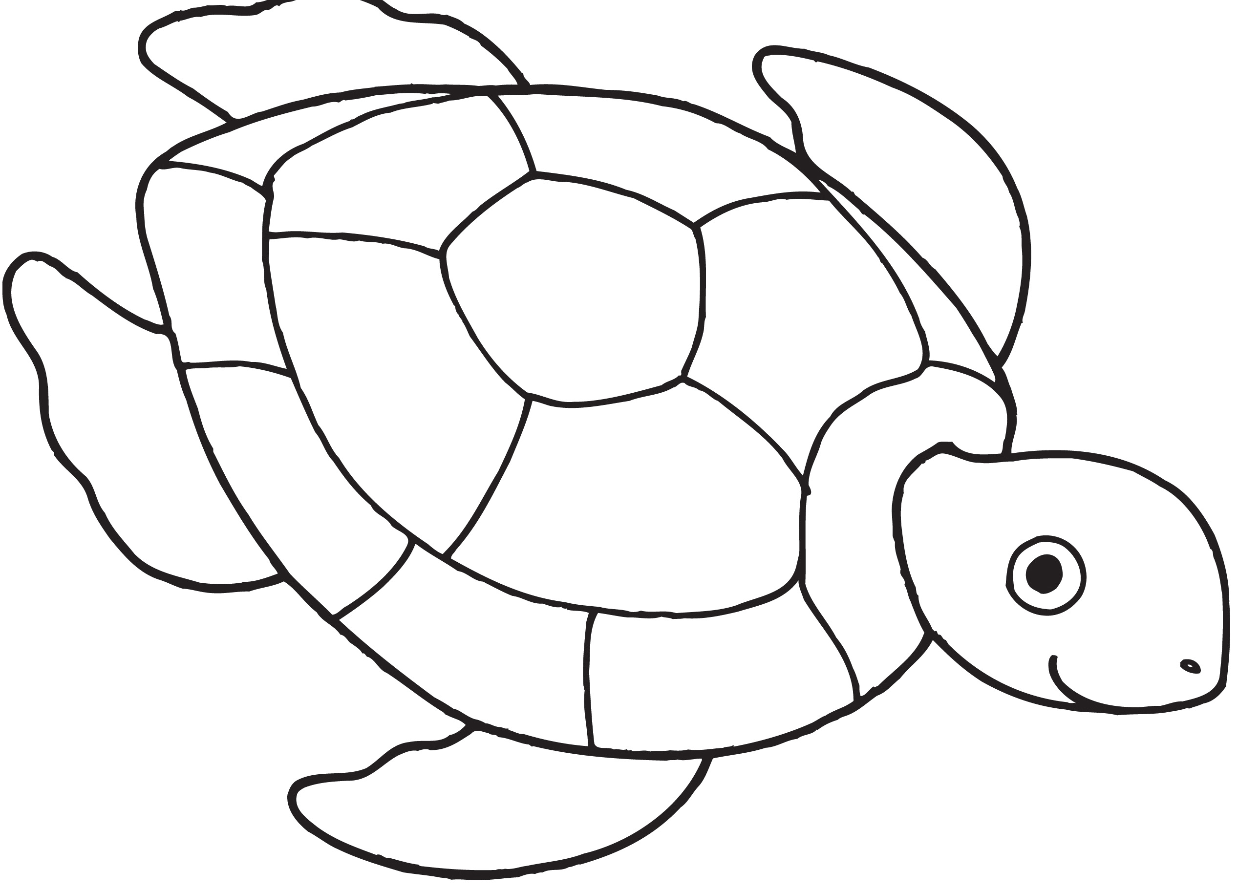 Sea Turtle Clipart Black And White 6