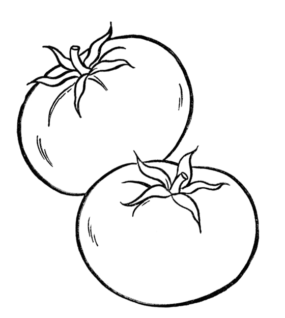 Tomato clipart black and white 2 » Clipart Station
