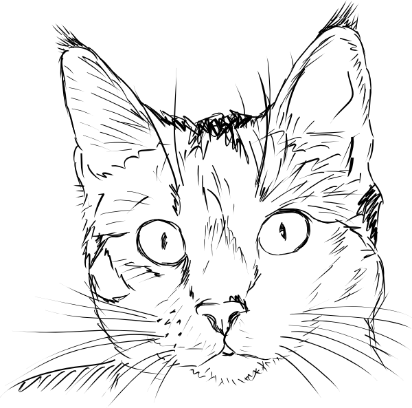 cat face clipart black