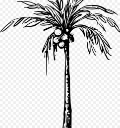 coconut tree black and white clipart 4 [ 900 x 1200 Pixel ]