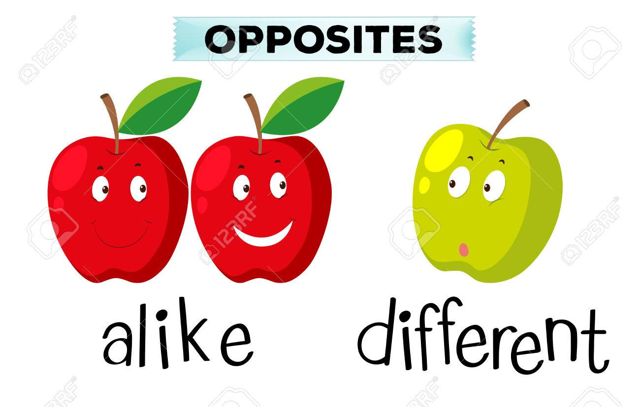 Opposite Words For Alike And Different Clipart Station