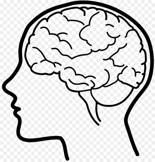 small resolution of human brain clipart 2