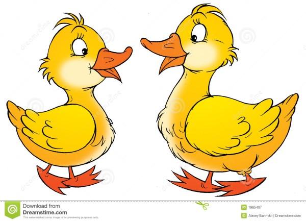 2 ducks clipart 28 free cliparts