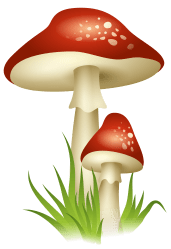 mushrooms clipart mushroom transparent clip background gnome fall agaricomycetes colorful library cartoon cliparts magic clipground vector yopriceville leaves pinclipart perfect
