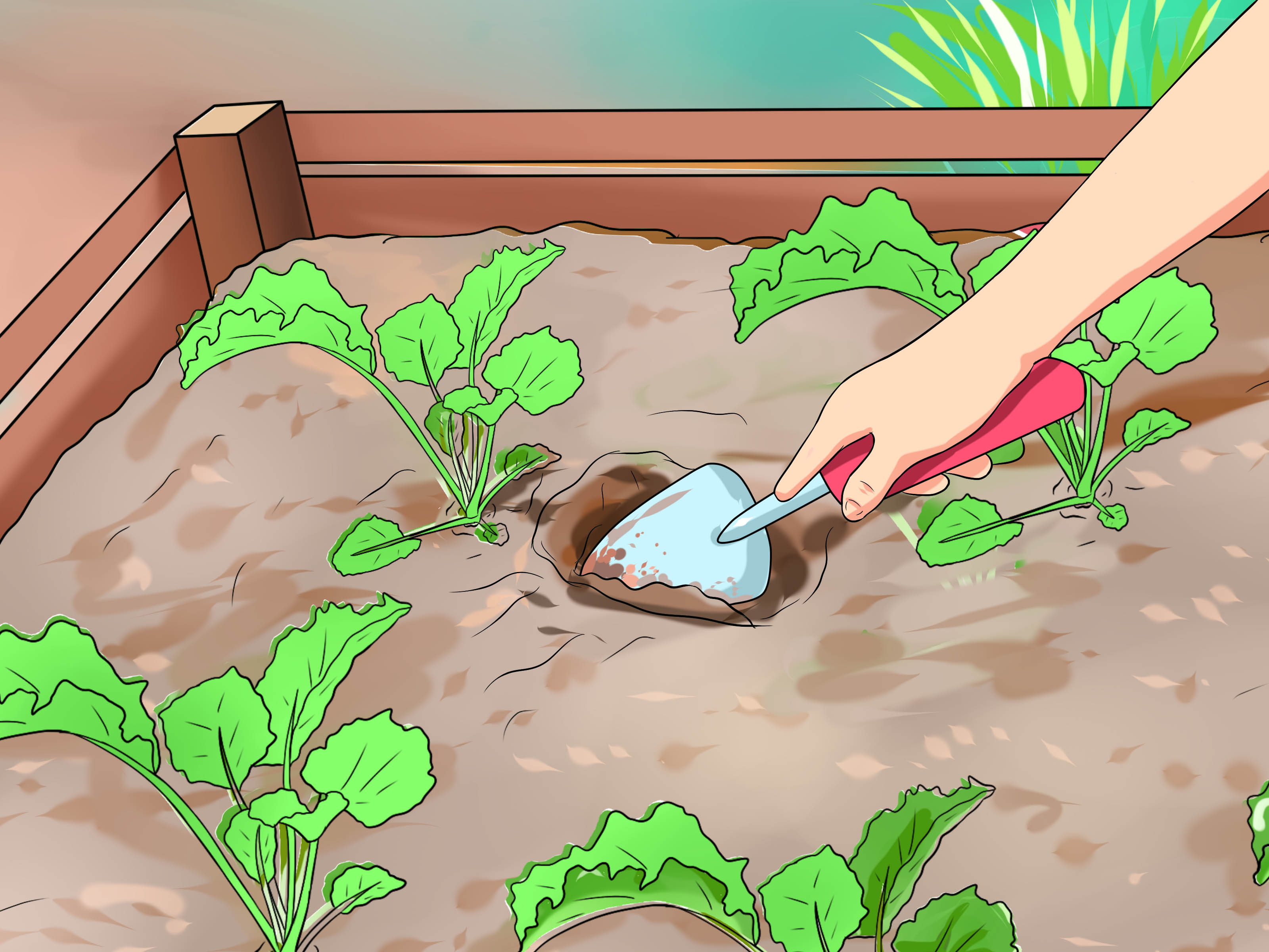 Water Clipart For Nursery Plant 10 Free Cliparts