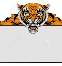 24 871 tiger stock vector illustration and royalty free tiger clipart  [ 1300 x 751 Pixel ]
