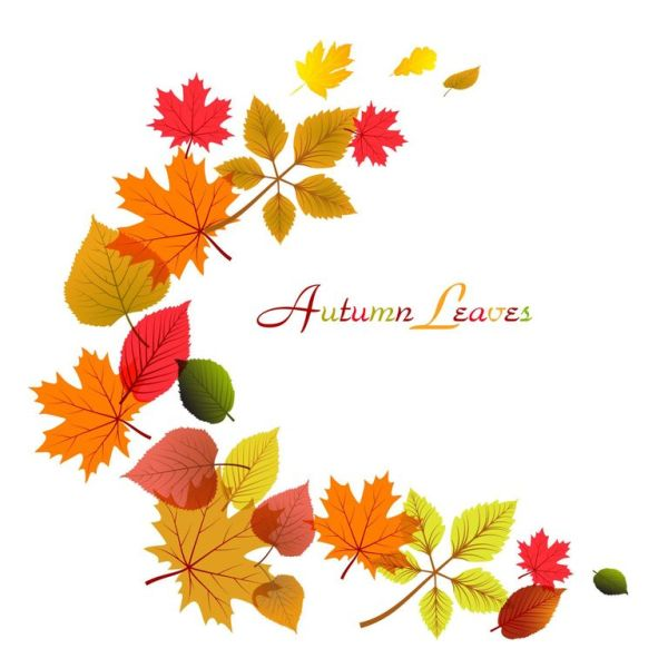 falling leaves clipart - clipground