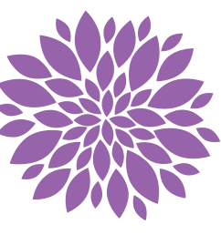 pink dahlia clipart  [ 3000 x 3000 Pixel ]