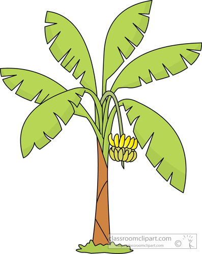 banana tree clipart 20 free cliparts