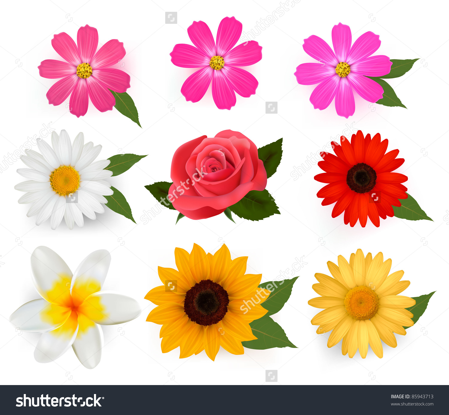 Animated Table Flowers