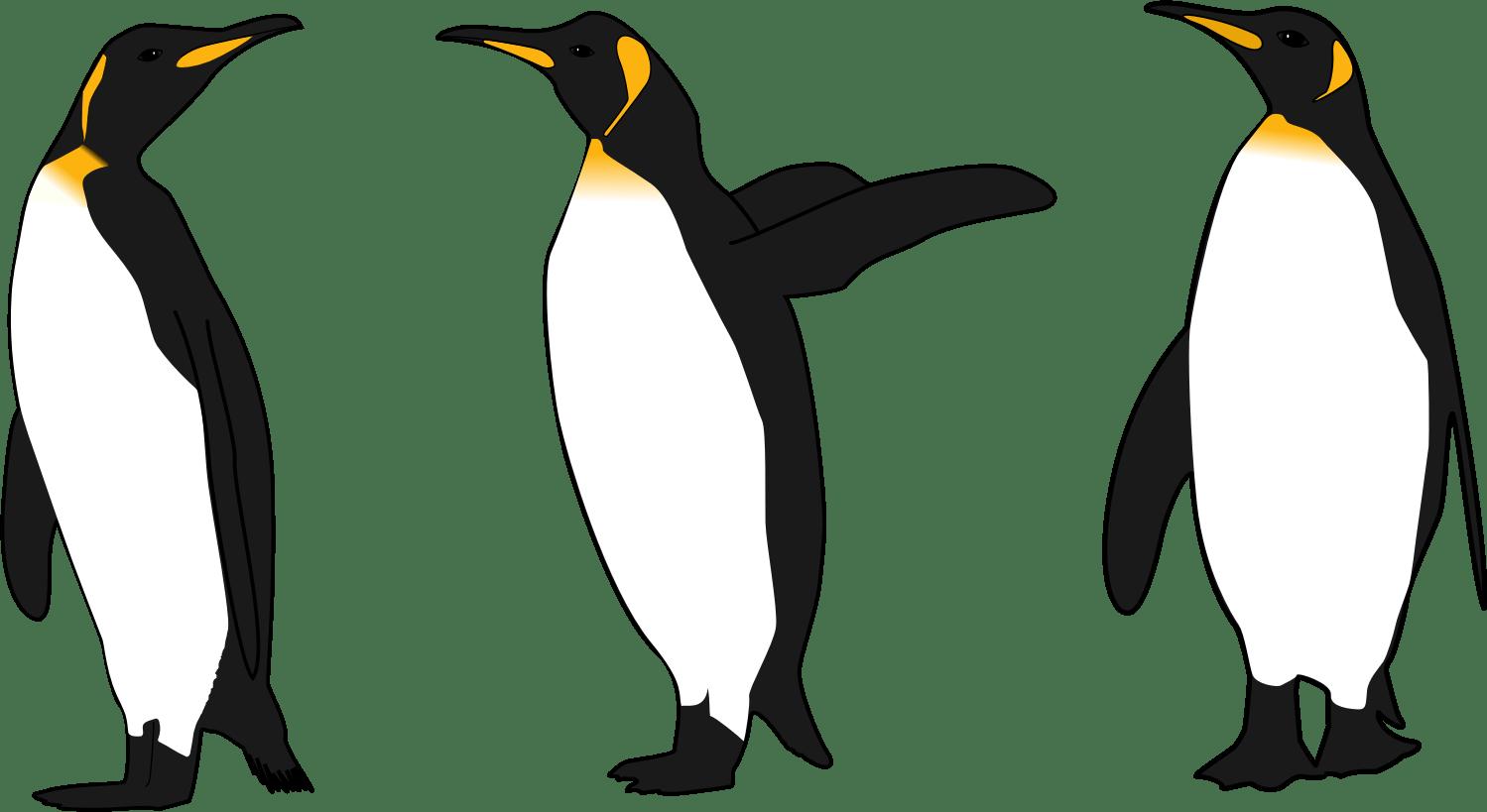 Big Penguin Clipart 20 Free Cliparts
