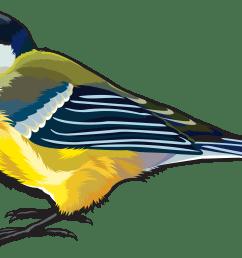 large bird png clipart image  [ 6291 x 3690 Pixel ]