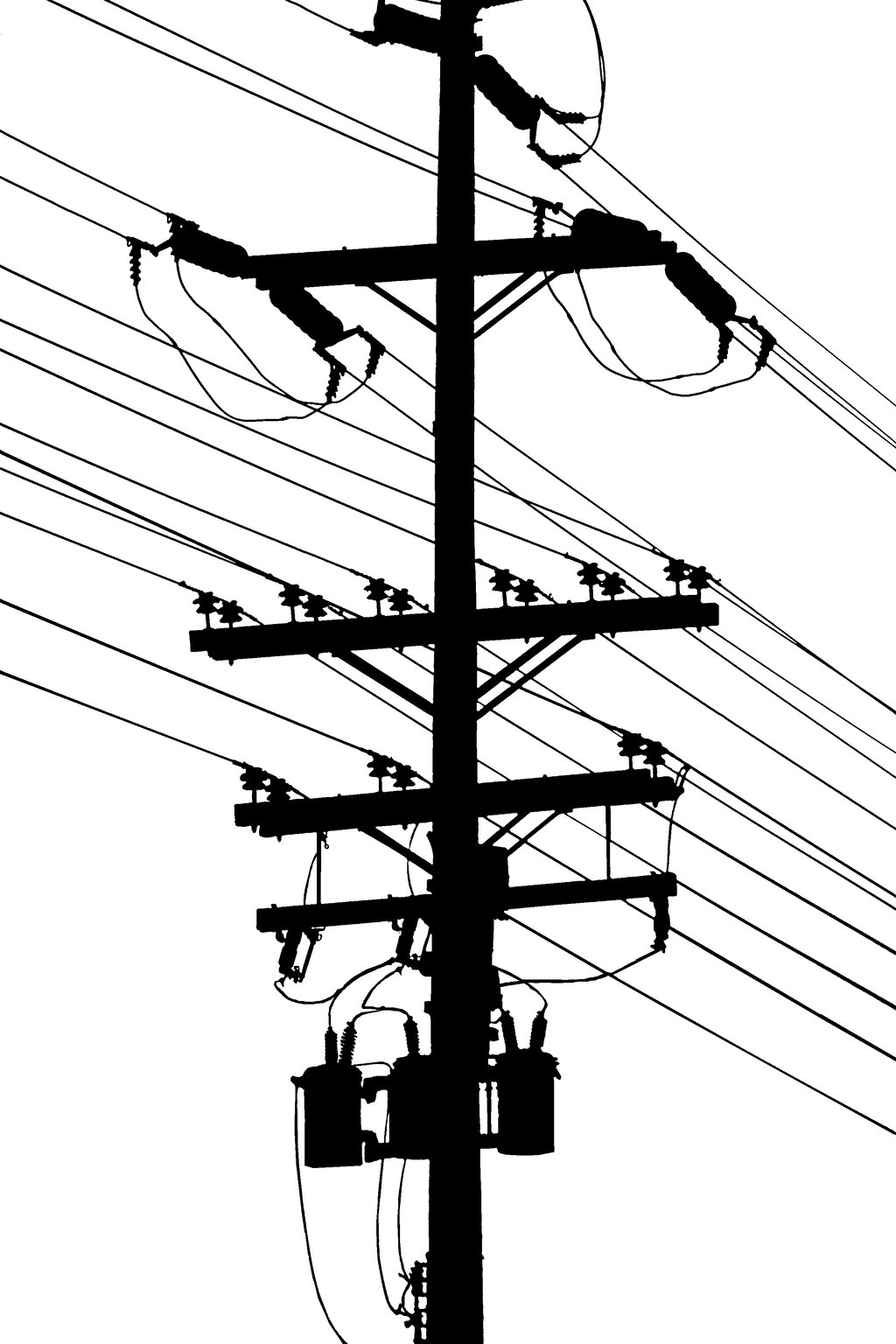 Birds On Power Pole Clipart