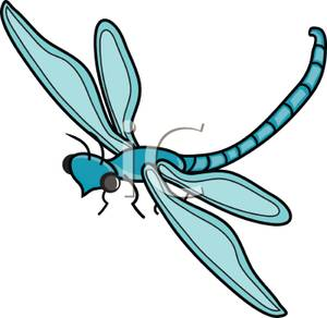 flying insect clipart - clipground
